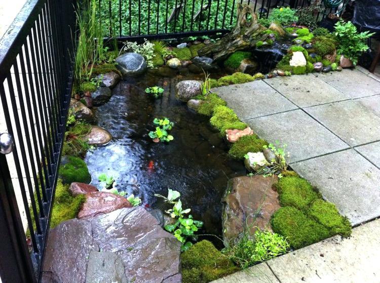 ... backyard koi pond backyard pond in small backyard koi ponds and CTDWSKY