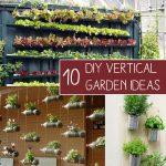 How to Grow Vegetables in Vertical Garden
