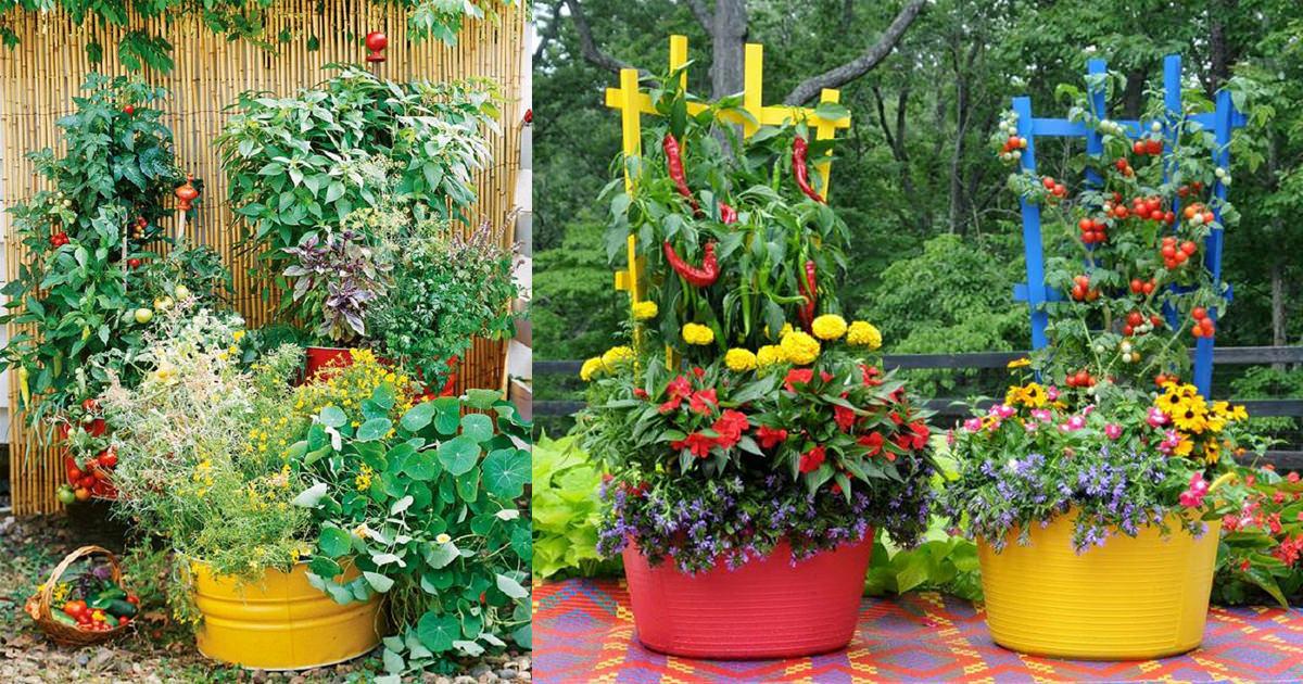 15 stunning container vegetable garden design ideas u0026 tips | balcony garden PIGBSQQ