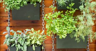 26 creative ways to plant a vertical garden - how to make NUXDAPR