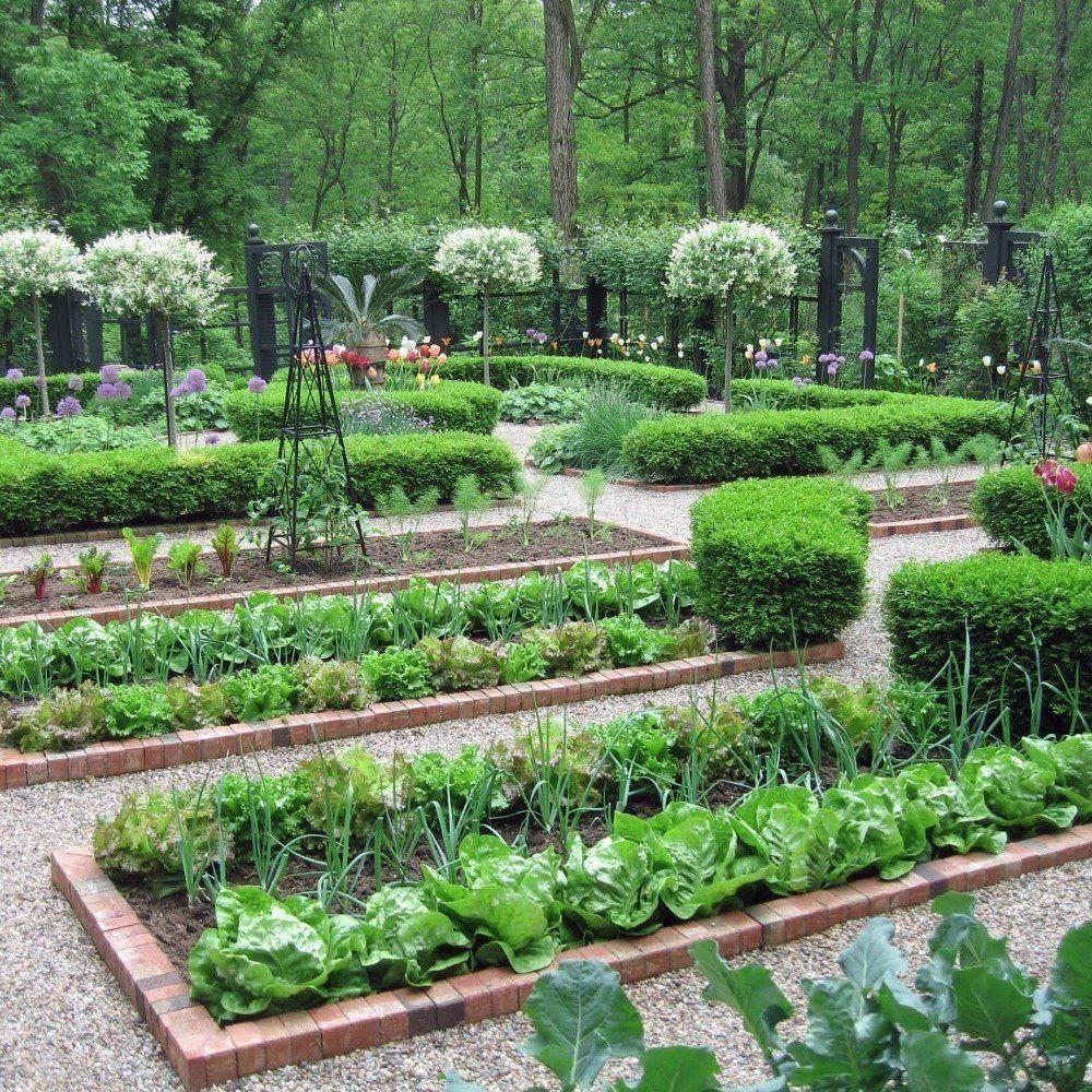 a kitchen garden, or a potager, is a french-style ornamental kitchen garden. YCLWSOV