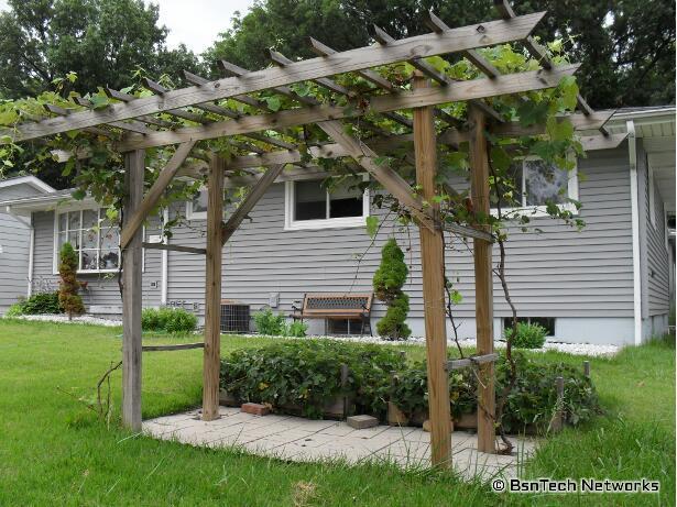 arbor for grapes arbor for grapes why you should build grape arbor GMPLIIX