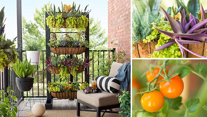 balcony garden ideas balcony garden with containers and vertical planter. BILABYP