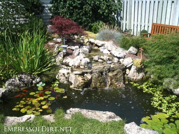 beautiful backyard pond ideas for all budgets | medium size inground garden LCWQTRV