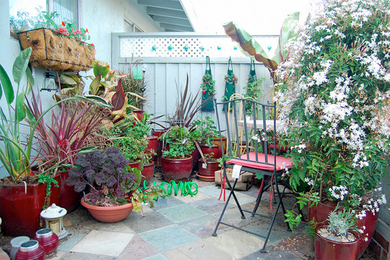container gardening ideas   small space gardening   houselogic WTMKFNT