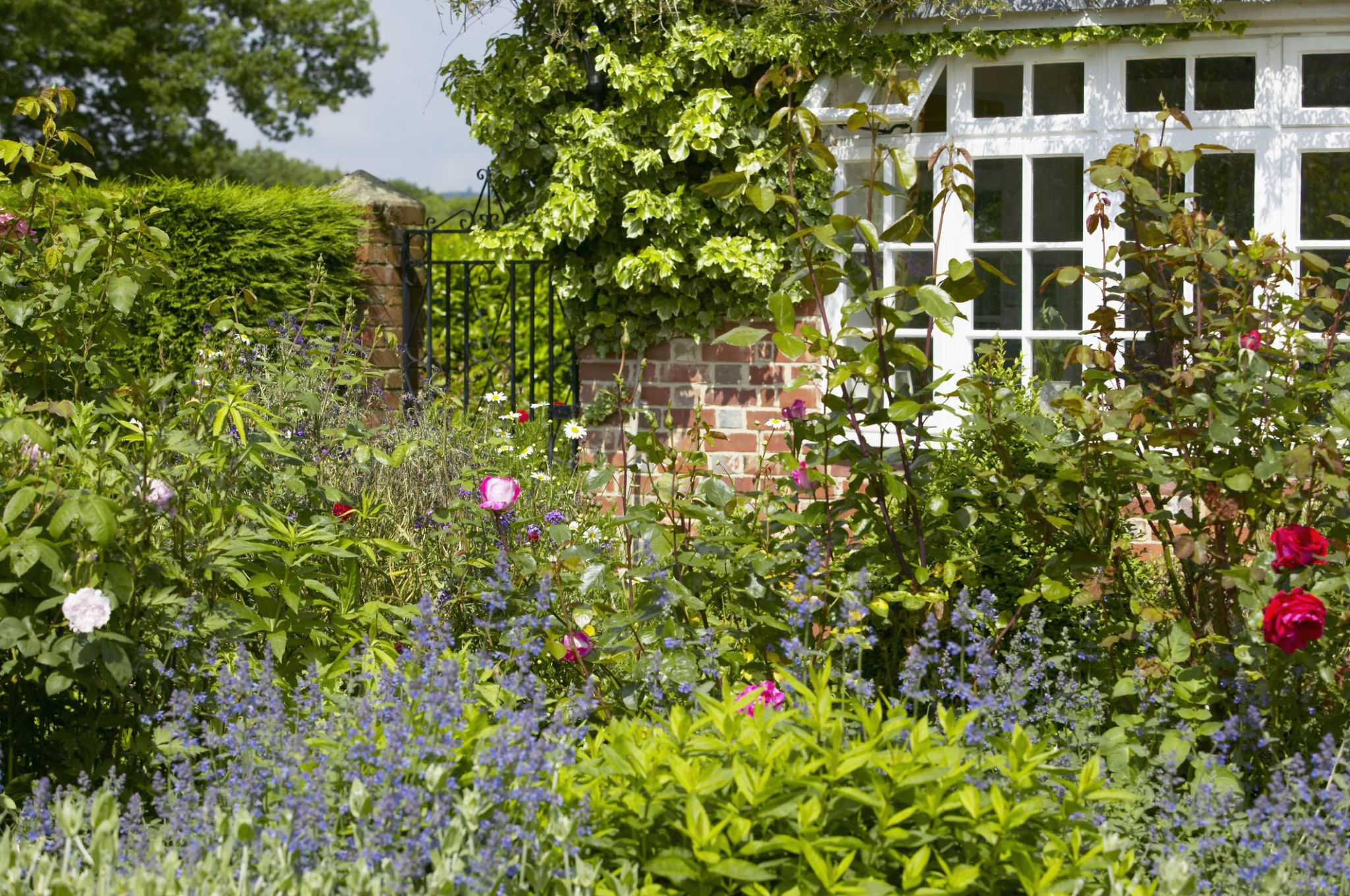 cottage gardens border infront of house with view to gate, the lowes garden, the ZMRTVKE