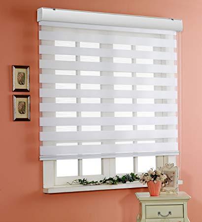 custom cut-to-size , basic horizontal window shade blind zebra dual  treatment GQIOVIG