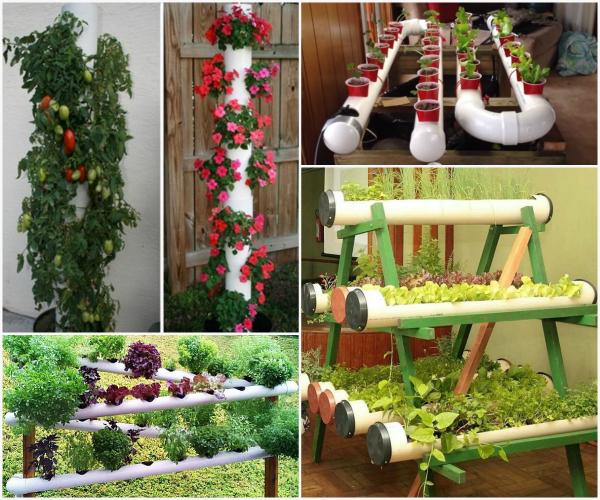 diy pvc gardening ideas and projects WSZULIG