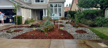 drought resistant landscaping drought tolerant landscaping before drought tolerant landscaping after WAVHWDO