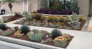 drought resistant landscaping drought tolerant landscaping orange county, ca   drought resistant . ZDEIMGB
