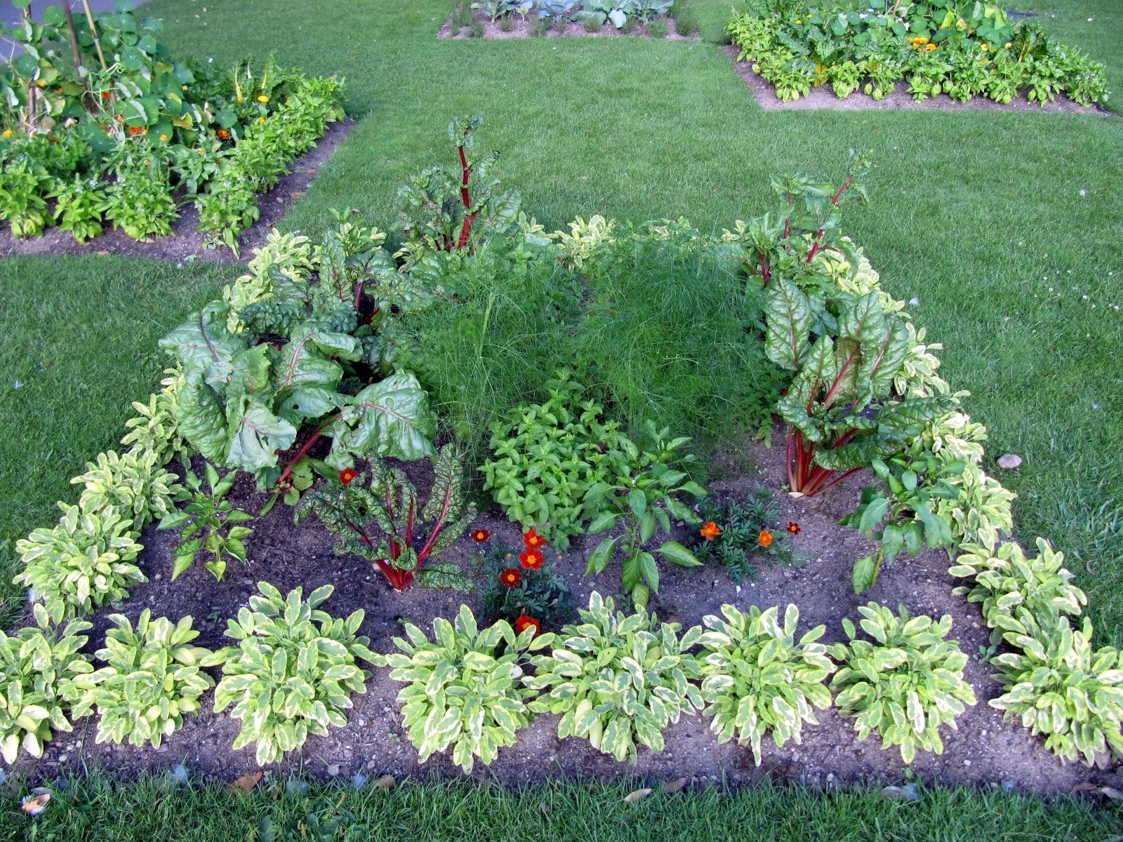 edible landscaping edible landscape KBOXEVB