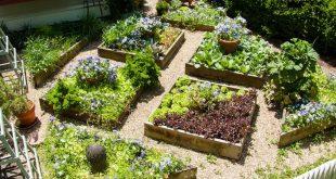 edible landscaping plant a square foot vegetable garden NCEXEJG