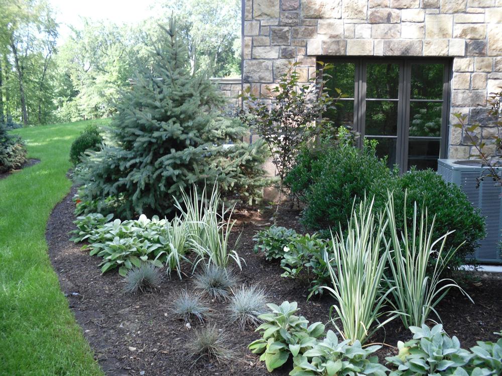 evergreen landscaping ideas YZUWOVF