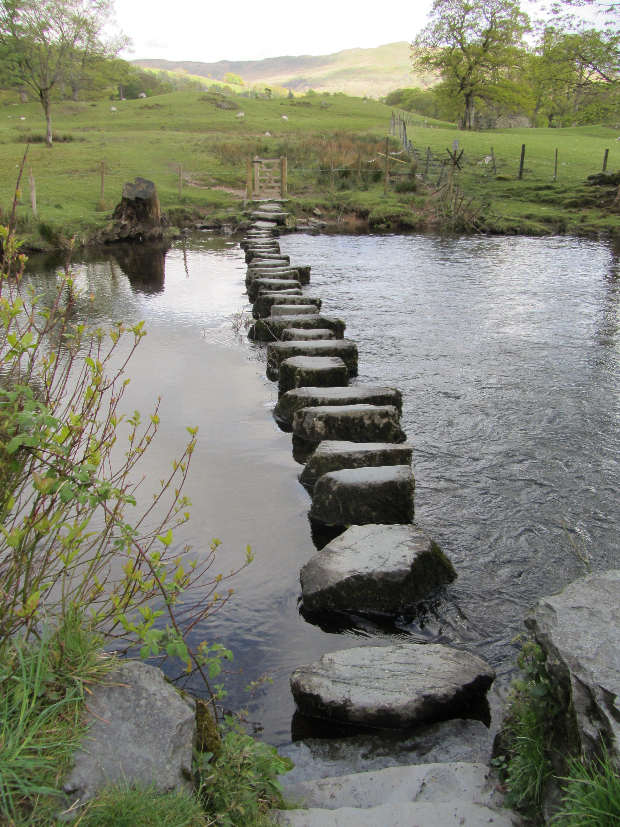 An Overview of Stepping stones