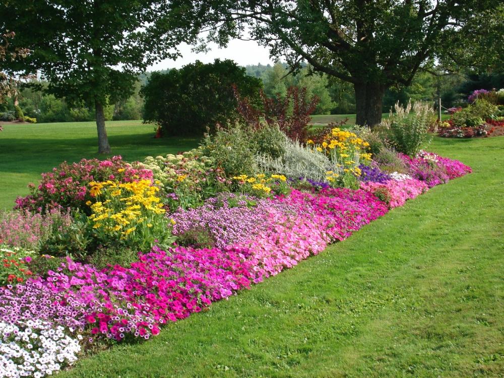 flower beds flower bed ideas - making garden beds OGDFBBY