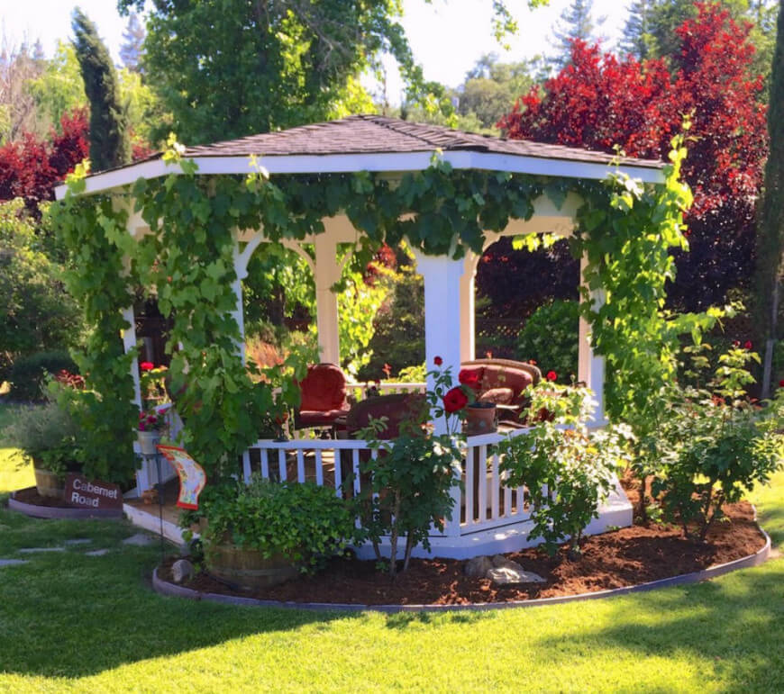 garden gazebo crawling vines are the fastest way to incorporate your gazebo with your YXGOYFQ