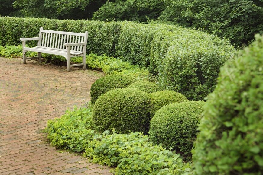 garden hedges the sculptured shape of the rounded hedges in this garden complement the XWKAUNI