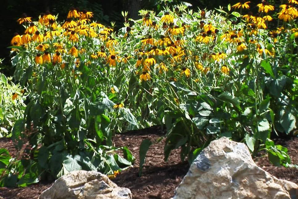 garden landscaping ideas   diy GPWRIDA