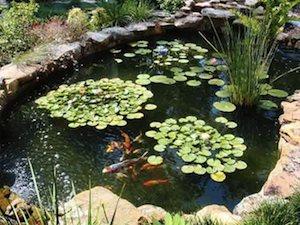 garden pond sunken pond kits HTSGGBG