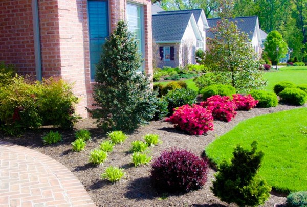 Reasons you should have a good front garden design