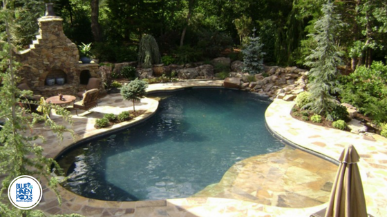 gunite pool with landscaping and stone details JBYGWRF