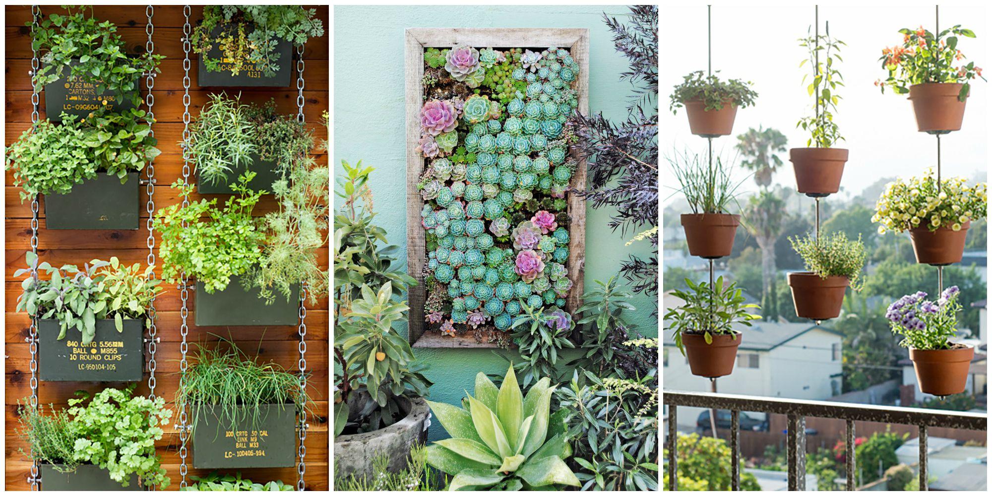 how to plant a vertical garden LMIWKVA