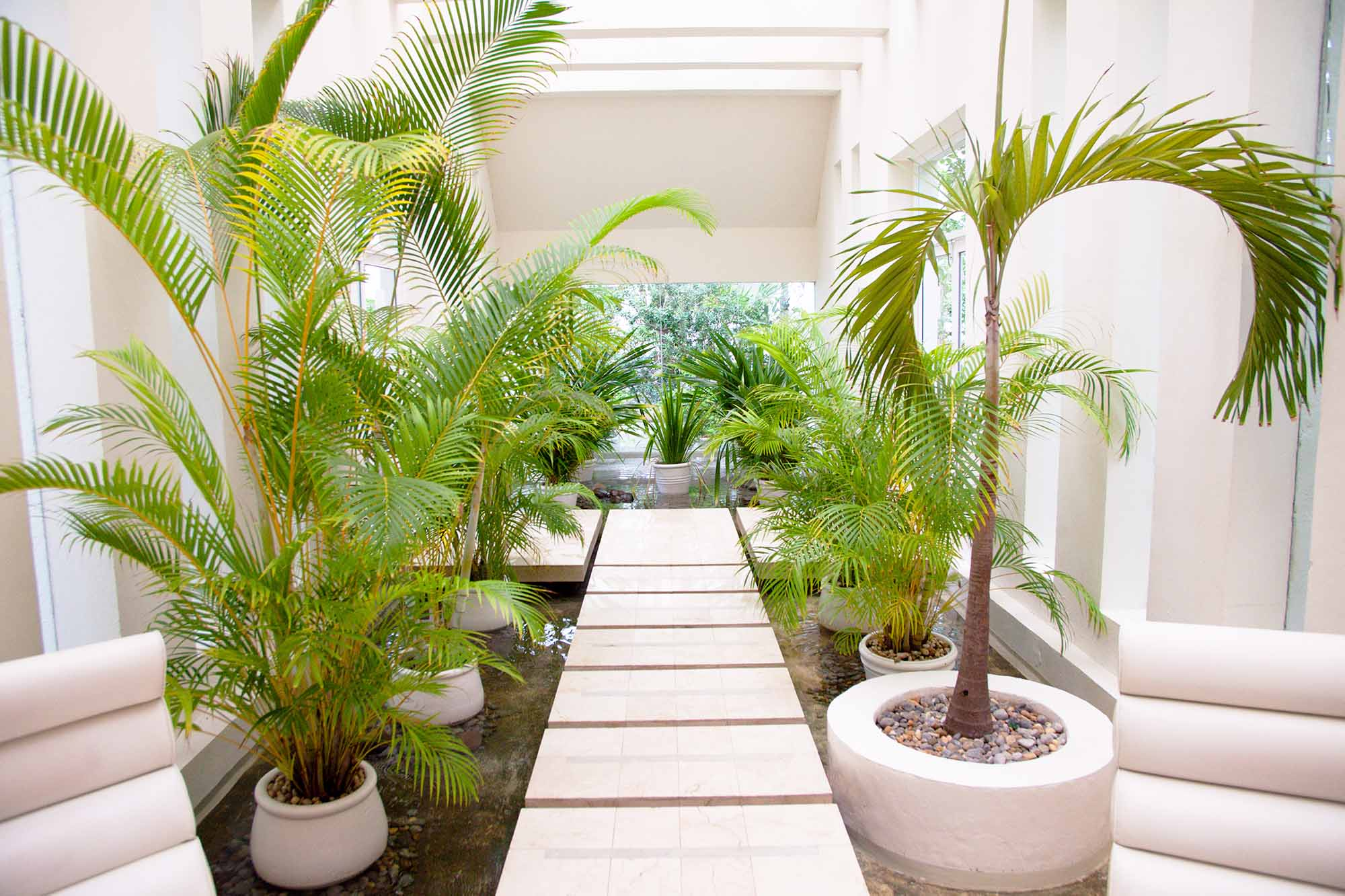 indoor garden ideas QHNGRRU