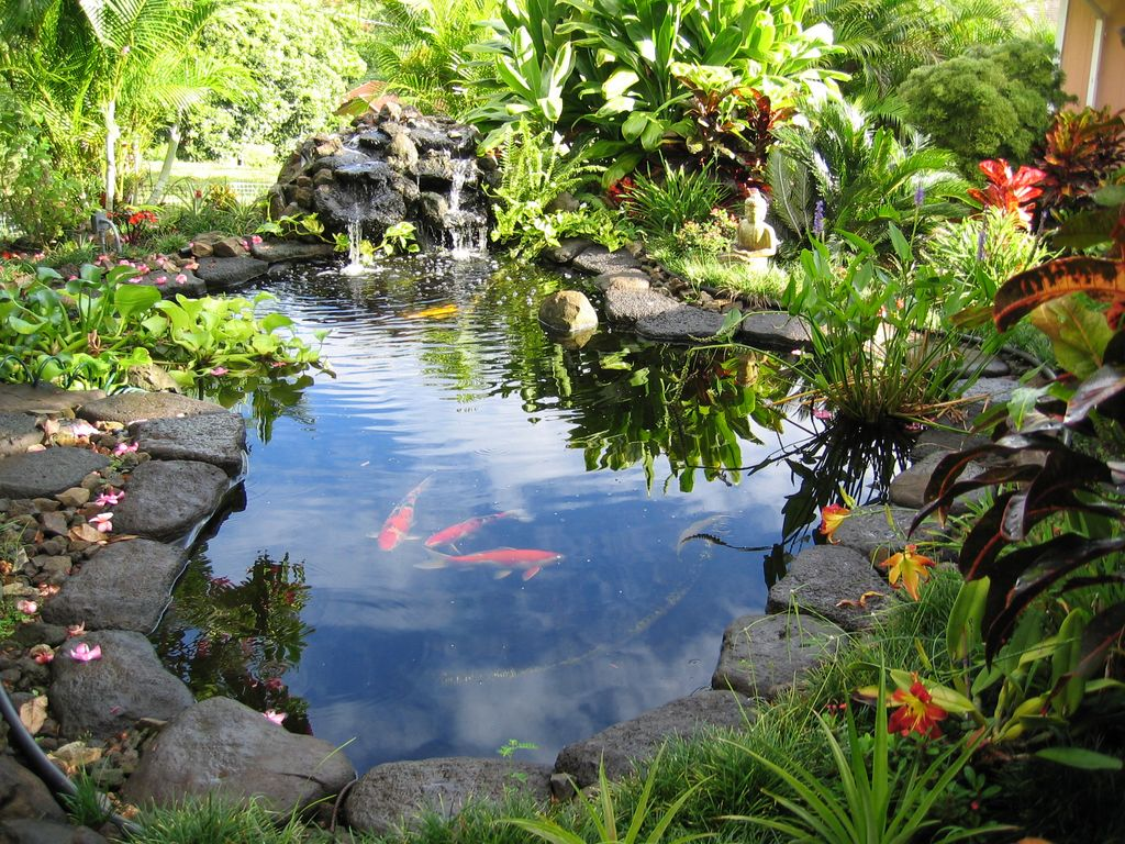 ko olau country gardens: 2 acres with views, relaxing family reunions- 5 MMVQADN