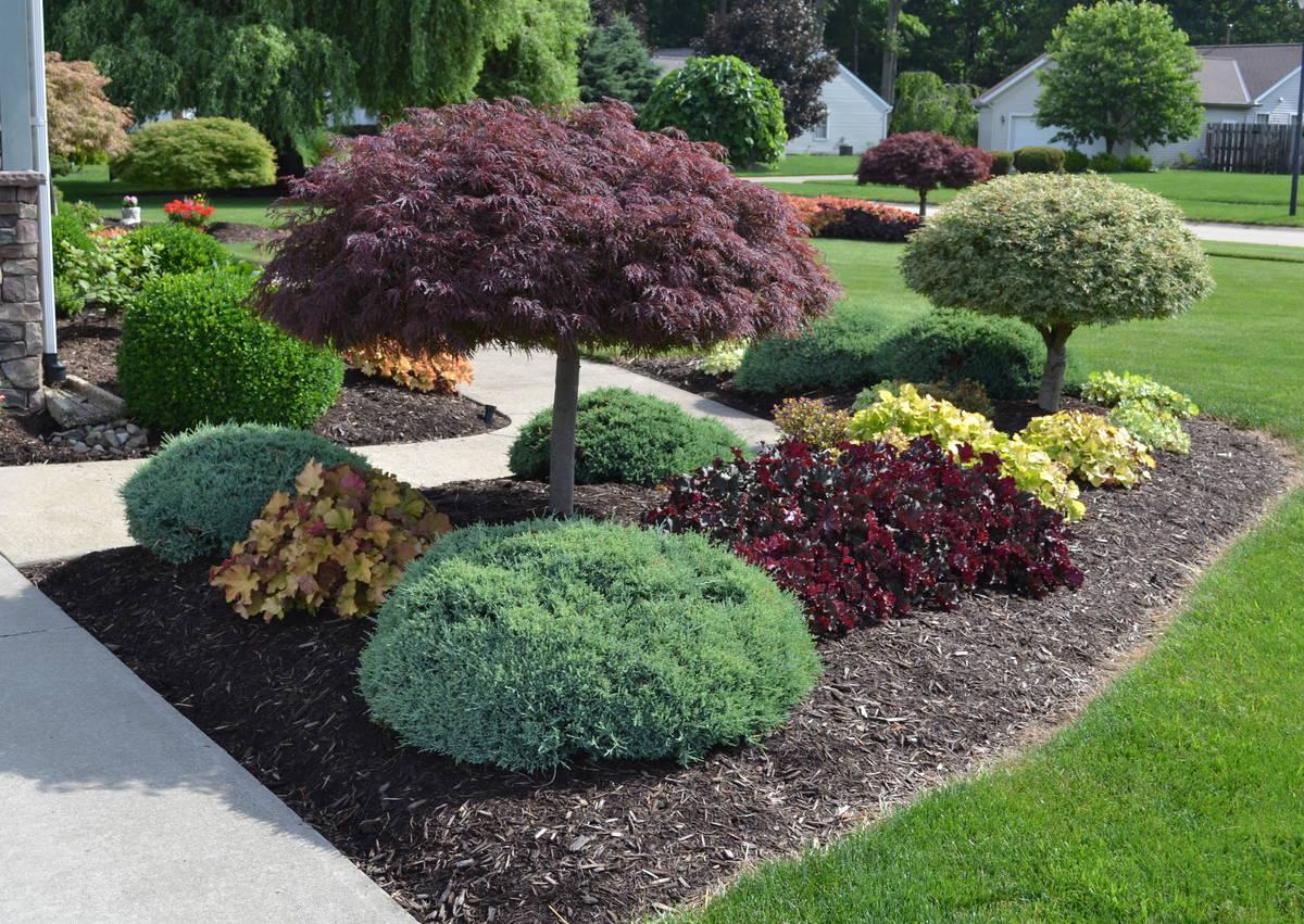 landscaping design landscape design idea for the outside of a sidewalk. STLZEWY