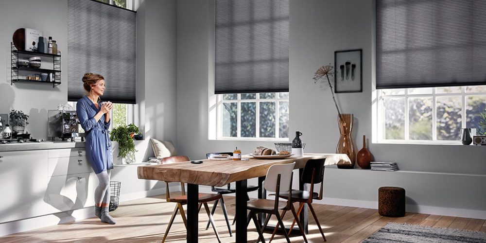 motorized blinds versatility, convenience, and style are a few of the benefits of swapping LXVDVTE
