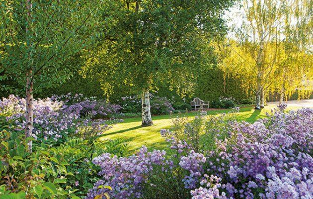 paul bangayu0027s country gardens - photography by simon griffith YAFQPJU