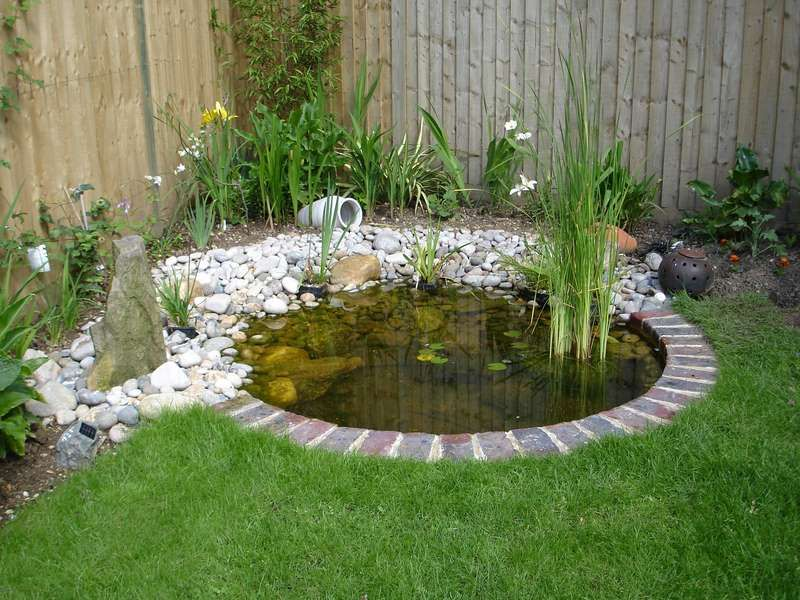 pond design small pond designs | small pond .... please save this pin! .... HIWHPNN