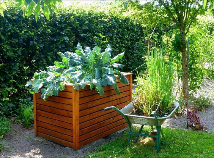 raised bed gardening raised bed garden-3 AREFAQO