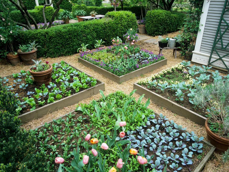 Make your Garden well Organized by adopting Raised bed Gardens