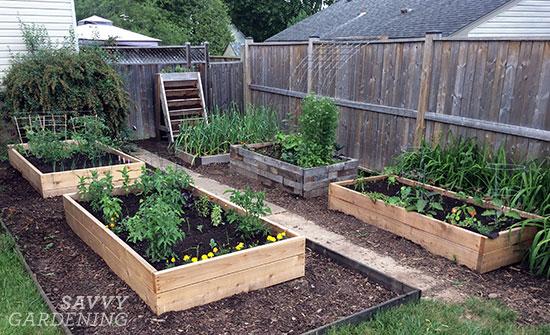 raised bed gardens RPDFVDE