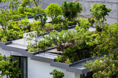 roof garden vo trong nghia architects, hiroyuki oki · mr. hoanu0027s hanging garden UYGKQFH
