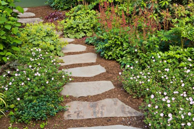 stepping stones HINTJLE