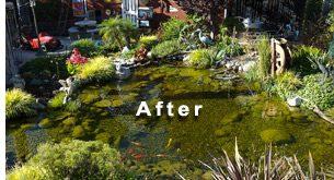 the proper pond design is essential to success u201c ZNEQHNH