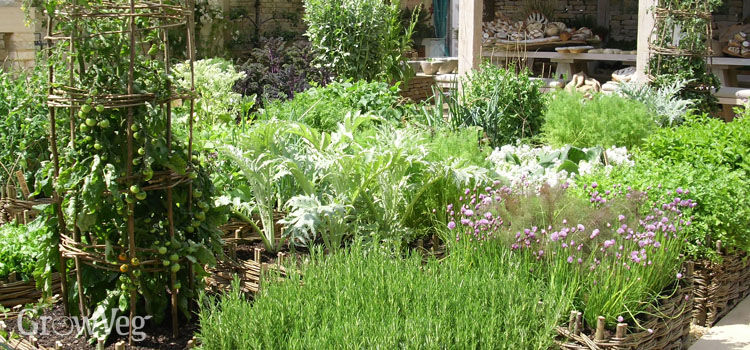 Planning Your Own Vegetable Garden Design