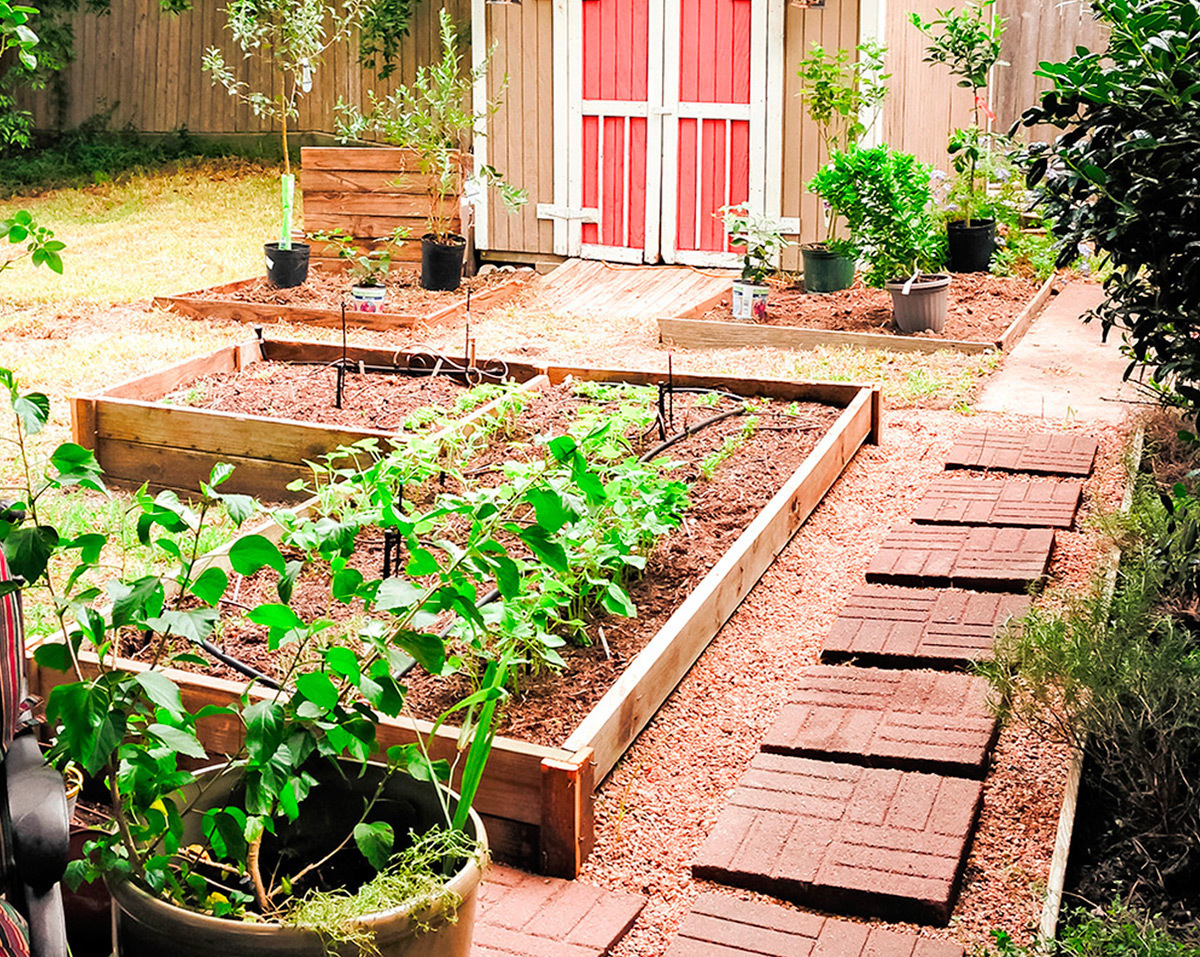 vegetable u0026 flower container gardening ideas TUMWQYU