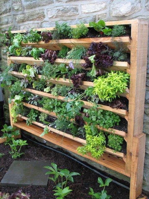 vertical garden ideas 20 excellent diy examples how to make lovely vertical garden IPZMYDQ
