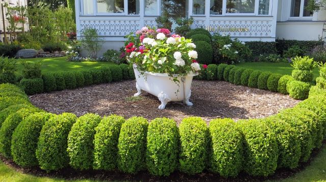 40 Awesome and Cheap Landscaping Ideas: #27 is Too Easy!