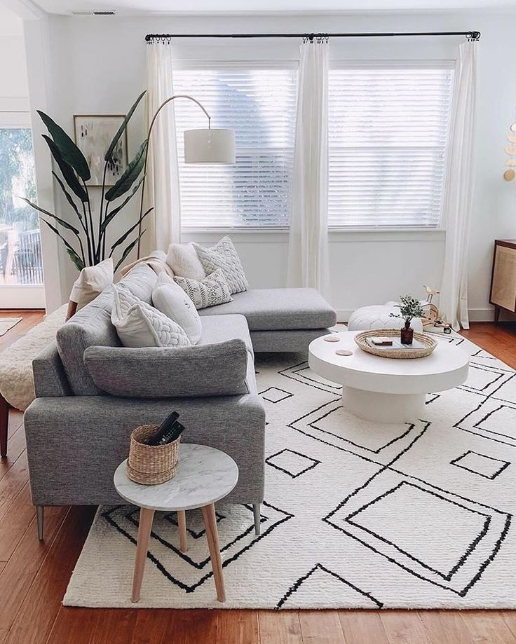 Living Room Rugs Ideas with Modern Design